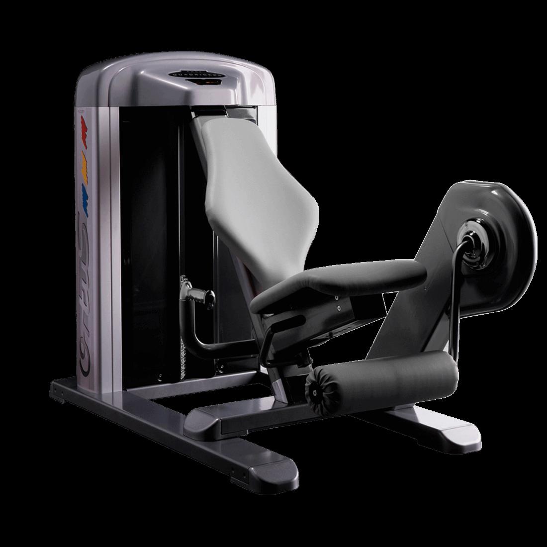 Machine Leg Extension WP06