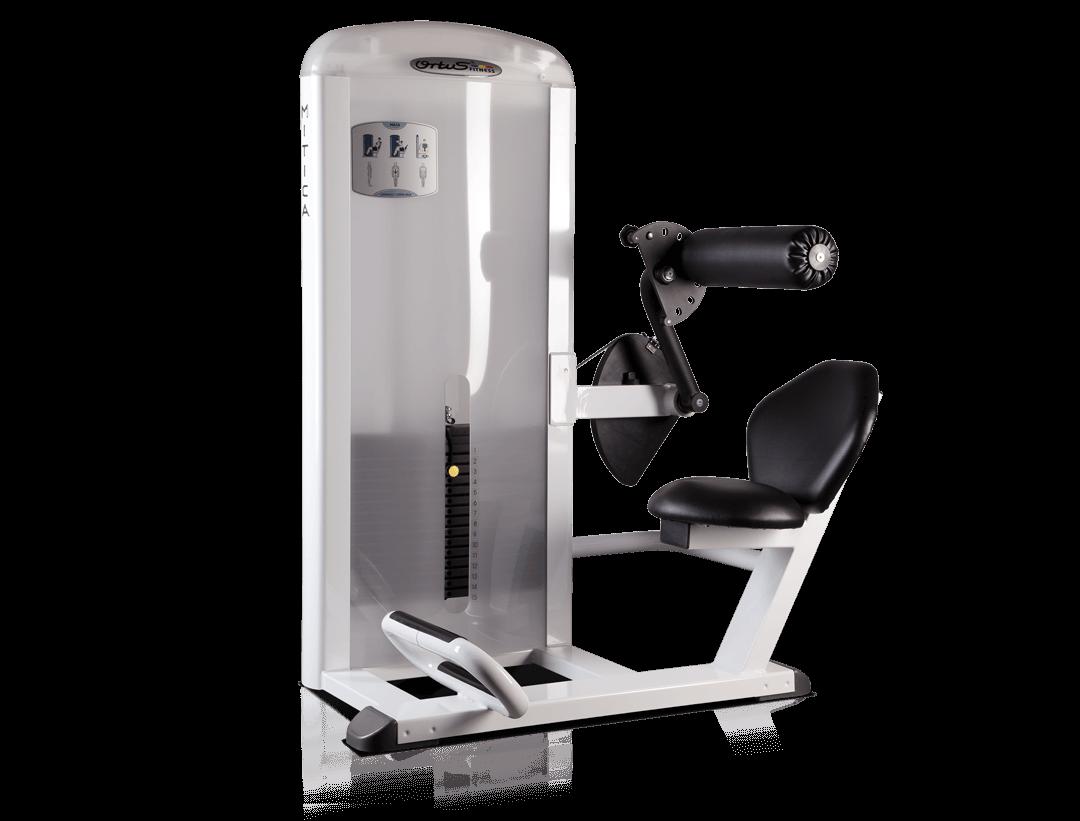 Machine Presse a Lombaires MA10